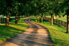 Ranch-path-hd-desktop-wallpapers-2014041729